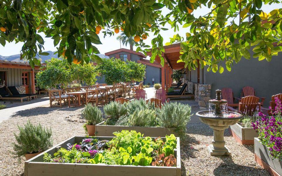 Boutique Hotels Desert Hot Springs California