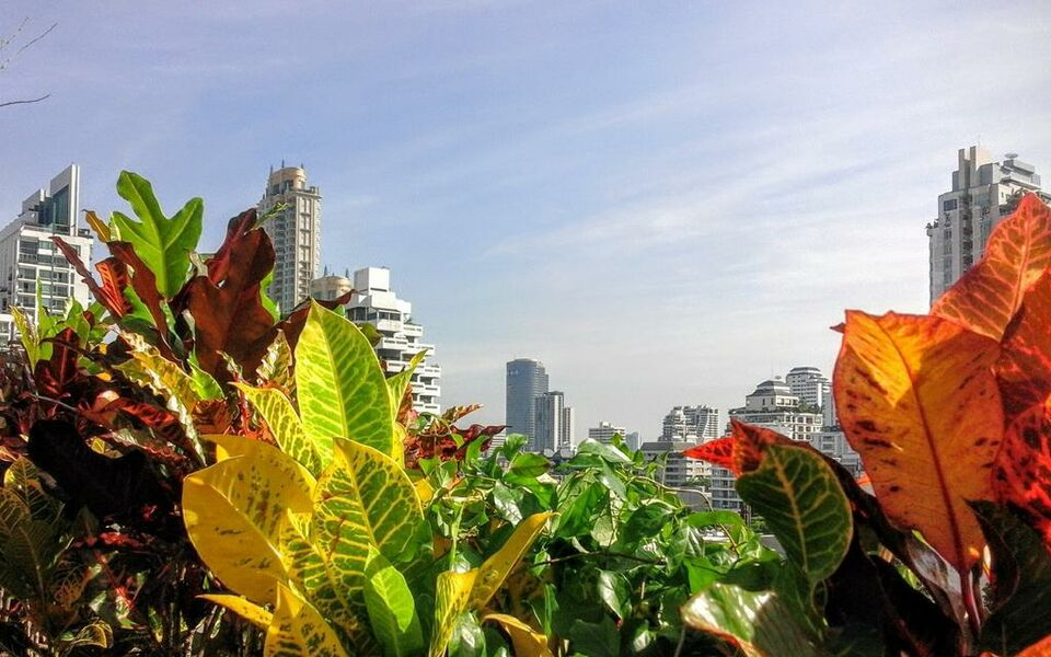 Tints of Blue Hotel, Bangkok, Wattana (31)