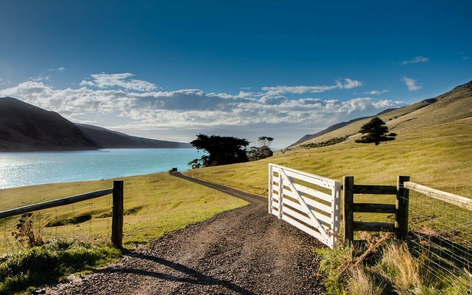 Annandale Coastal Farm Escape & Luxury Villa Collection, Akaroa (7)