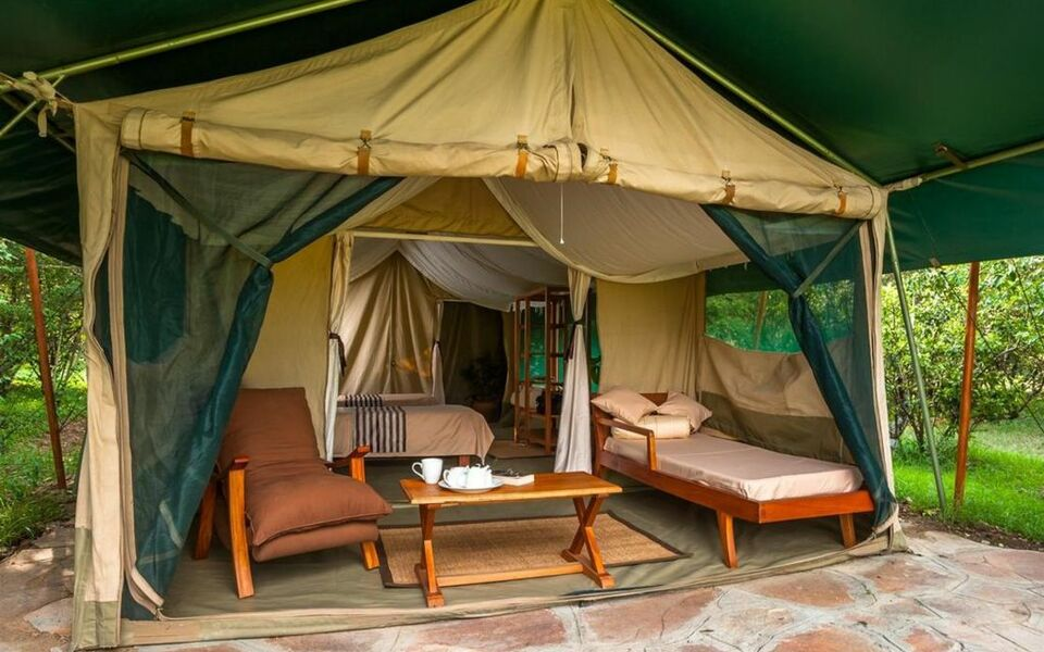 Losokwan Luxury Tented Camp - Maasai Mara, Aitong (1)