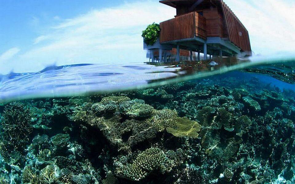 Park Hyatt Maldives Hadahaa A Design Boutique Hotel Gaafu